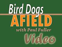 BDA Videos
